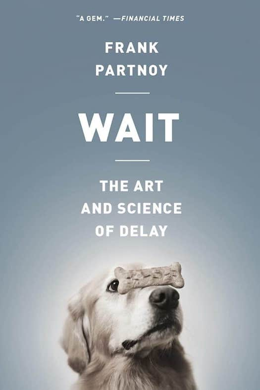 Wait: The Art and Science of Delay Book
