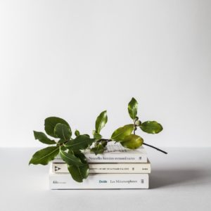 Must read minimalist books featured image